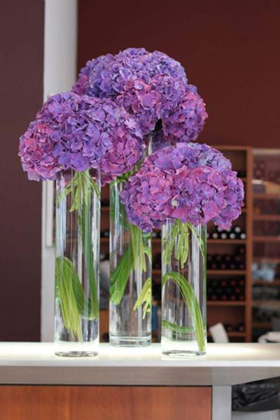 Vackra lila blommor i vas
